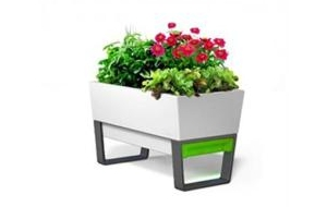 Dig in! Spring's must-have garden tech products