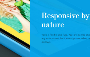 Introducing Voog – The Multilingual Website Builder